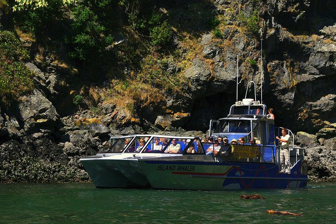 Jet Boat Tour to Deception Pass