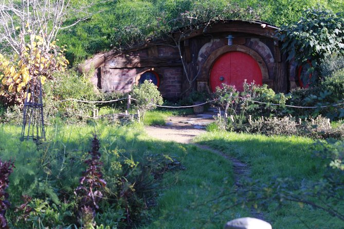 Hobbiton and Spellbound Tour (Glowworm Cave at Waitomo)