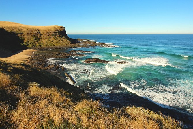 Mornington Peninsula Coastal Walk & Hot Springs Day Tour