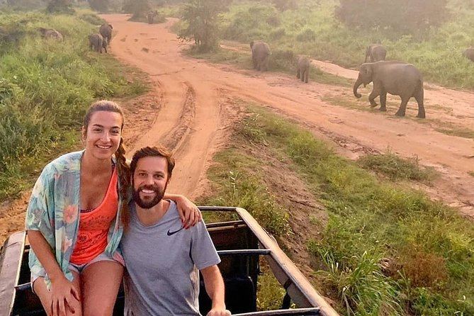 Evening Safari in Udawalawe National Park from Negombo