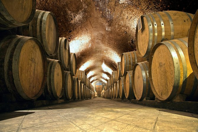 Bella Toscana Private Tour: 2 Chianti Wineries and San Gimignano From Livorno