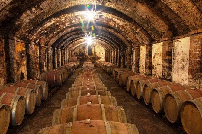 Chianti and Supertuscan tour 3 Wineries with ligh lunch 8 people max more personal