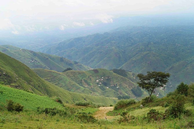 Hiking in the Lower Rwenzori Mountains