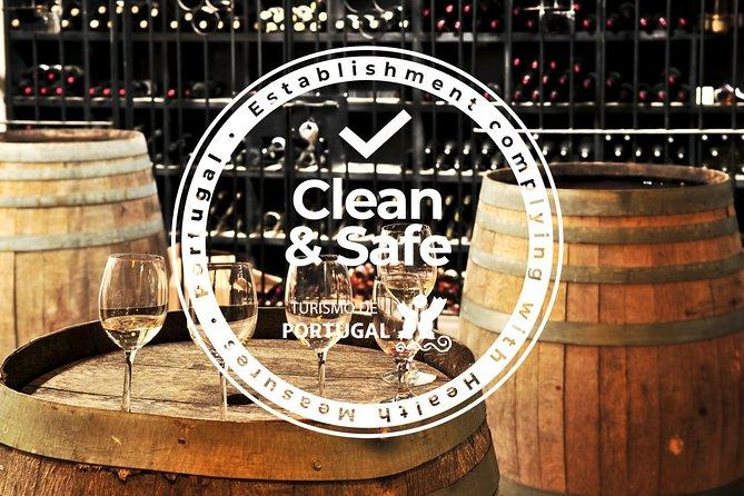 Évora Private Tour from Algarve - Cork Factory and Vineyard