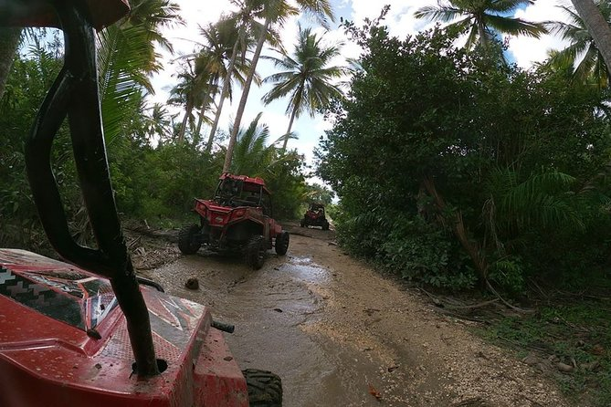 Buggy Tour from Sosua