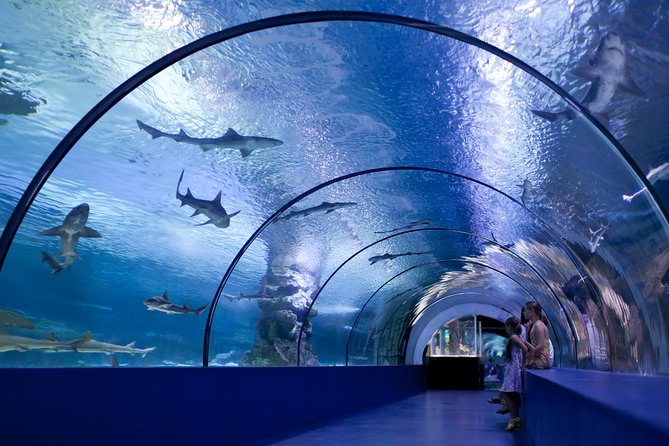 Antalya Aquarium with Transfer from Side