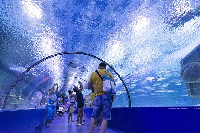 Aquarium & Face2Face Wax Museum from Kemer