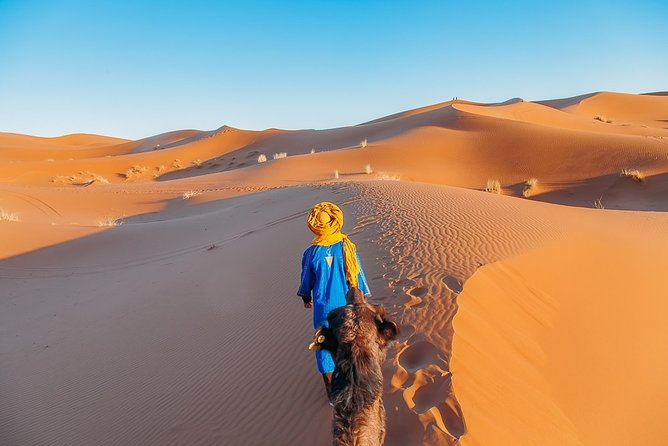 5-Day Private Tour to Merzouga and Marrakech from Chefchaouen