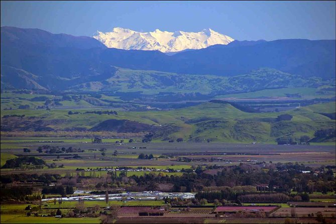 Shore Excursion: 4-Hour Discover Hawkes Bay and Napier Tour