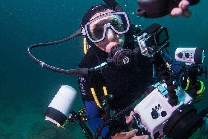 Scuba Diving Puerto Vallarta Undersea