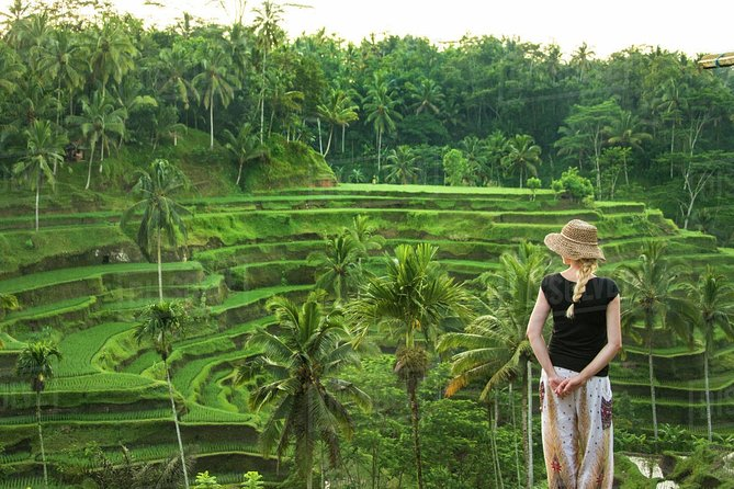 Best of Ubud Tour : Monkey Forest - Rice Terrace - Water Temple - Waterfall