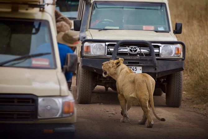 Five Days /Four Nights Serengeti & Ngorongoro National Park
