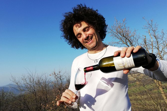 Private Wine Tour and Tasting with an Expert Guide and Sommelier