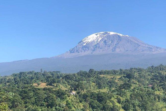 6days mount kilimanjaro trekking Machame route