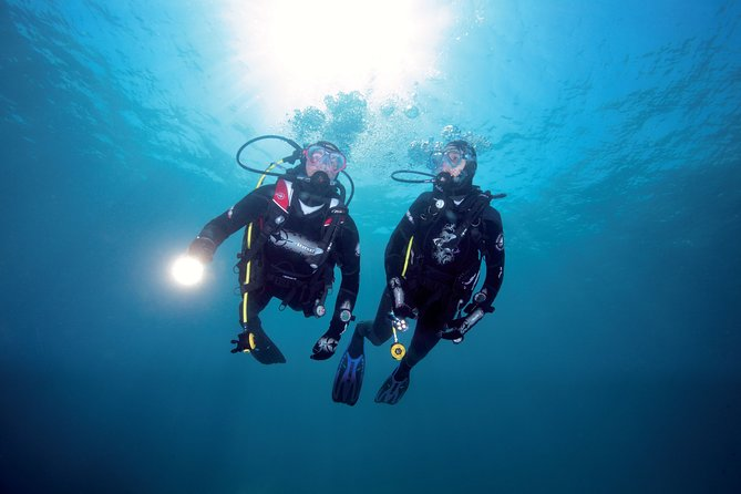 Full-Day Scuba Dive Charter for Crayfish and Scallops from Warkworth