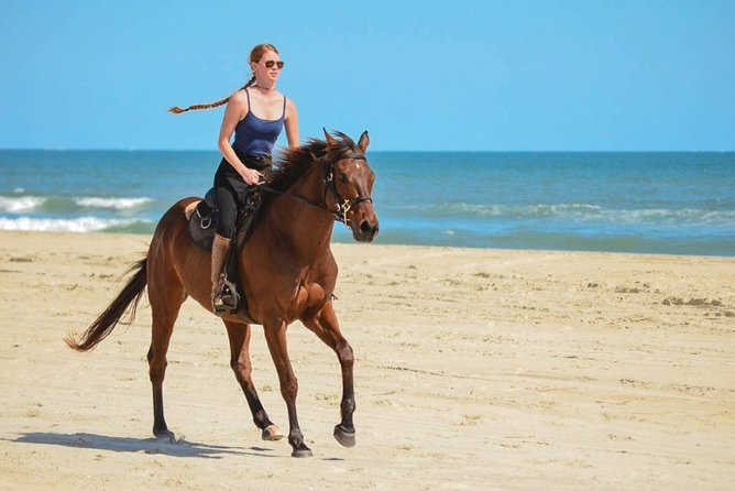Horseback Ride on Beach & Desert