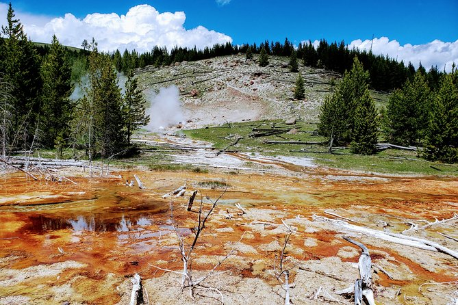 Yellowstone Private Guided Day Hike: Geyser Wonderland / Fairly Falls Trail