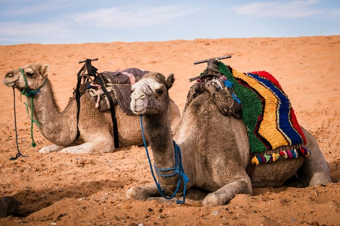 3-Day Merzouga Desert Tour from Marrakech