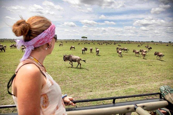 3 Days 2 Nights Serengeti & Ngorongoro Wildlife Lodge Safari