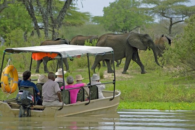 3 Days 2 Nights Selous Game Reserve Lodge Wildlife Safari
