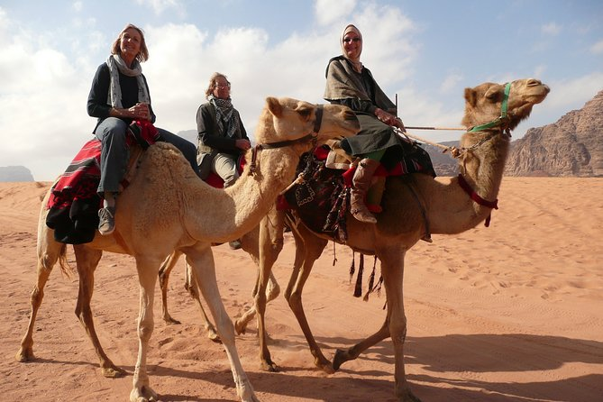 Dinner with the Bedouins and Camel ride