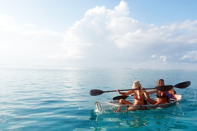 Moorea Lagoon Tour by Transparent Kayak