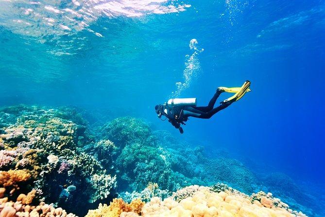 Scuba Diving in Kusadasi
