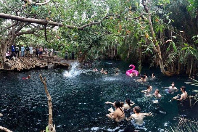 Kikuletwa Hotsprings-Day Trip