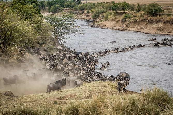 10-Day Private Safari in Tanzania