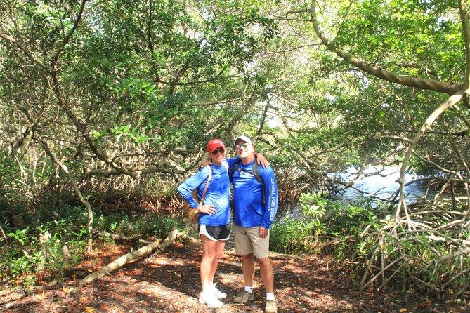 Eco-friendly hike & snorkel excursion: Aruba's mangroves & pristine coral reef