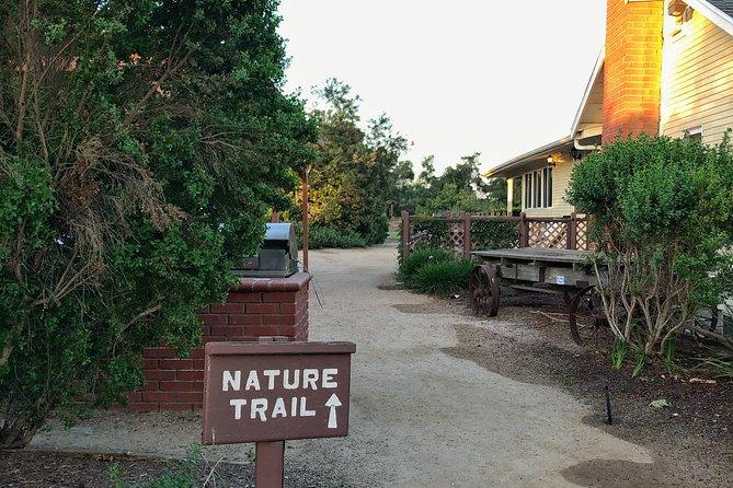 Sunrise Photo Walk at San Joaquin Marsh