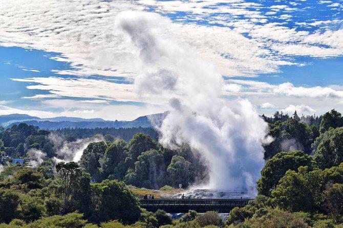 A Day Trip To Te Puia Rotorua