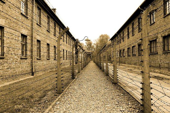 Auschwitz Birkenau live guide tour