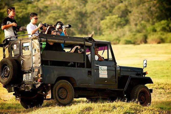 From Bentota: Yala National Park Day Excursion (UPTO 5 PAX)