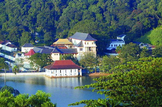 Kandy One Day Tour