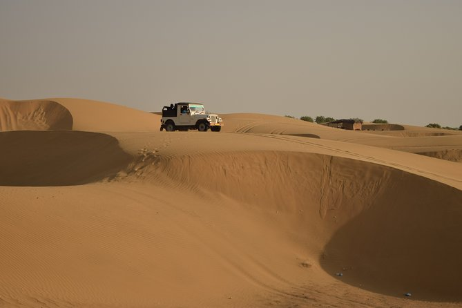 Complete Desert Experience- Jeep Safari, Dinner, Cultural Programs and Bonfire