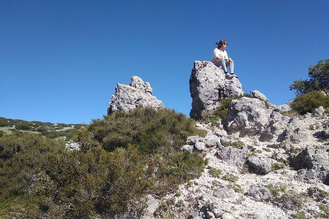 Original Collecting Mountain Oregano and Thyme Private Tour in Lefkada