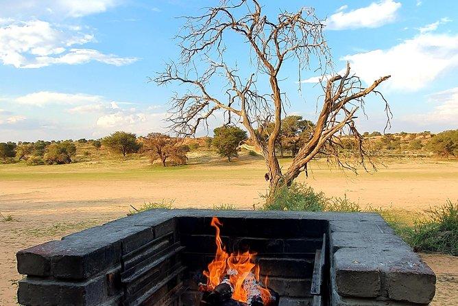 6-Day Tour in Kgalagadi Safari
