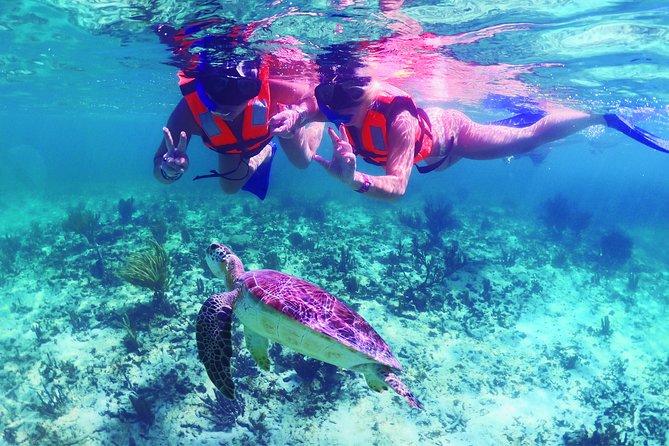 Underwater World - Riviera Maya