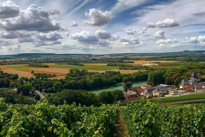 Reims: Small-Group Morning Tour with Taittinger and Family Winery