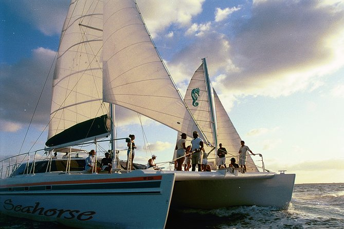 PRIVATE Charter - Sail & Snorkel, Harbor Cruise or Sunset Dinner Cruise