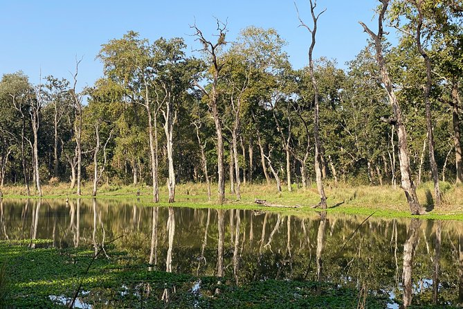 3 Nights 4 Days Comfortable Chitwan Safari Tour