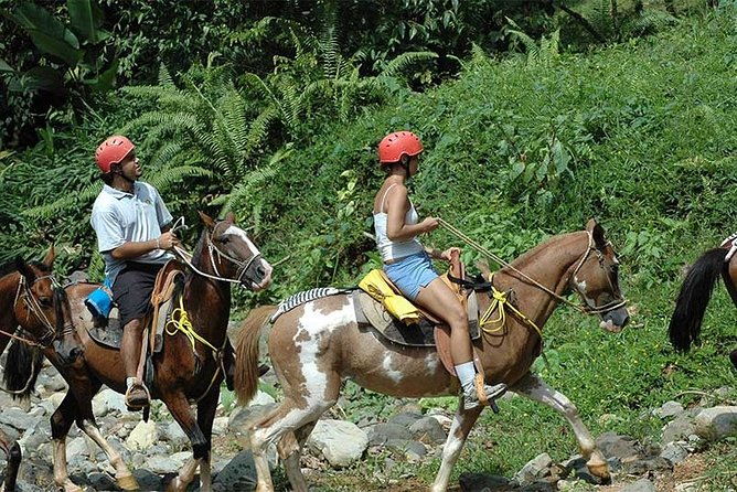 Horseback Riding & ATV 2 hrs