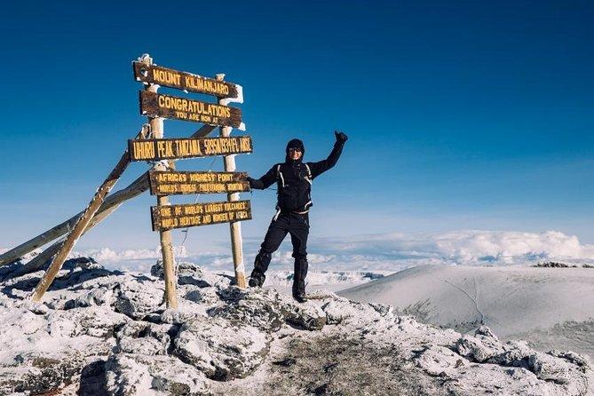 8 Day Kilimanjaro Climb Lemosho Route