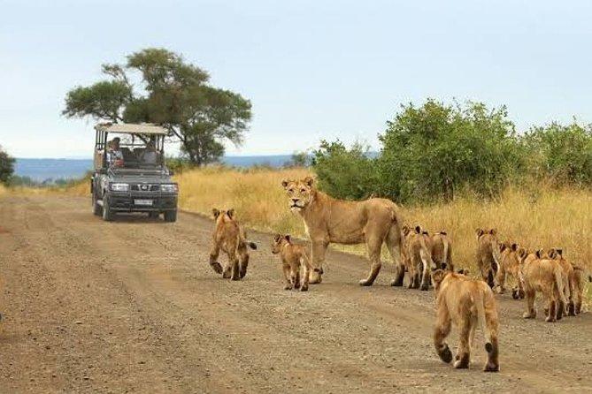 2 Days Mid-Range Safari to Lake Manyara and Ngorongoro Crater
