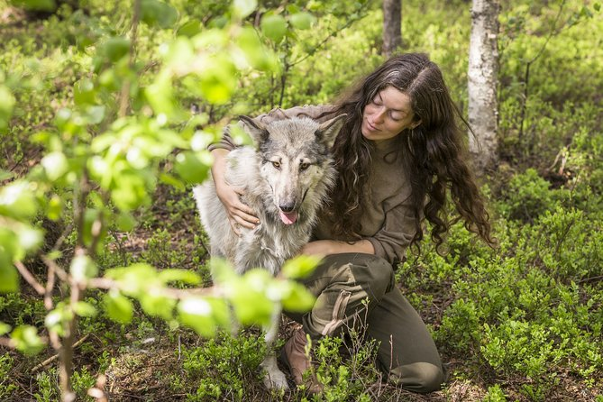 Meet Taivas and the Wolfdogs
