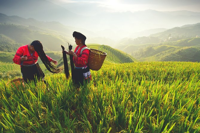Private day tour to Longji Rice Terraces and Minority Villages