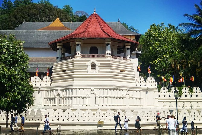 All Inclusive Kandy Temples Tour
