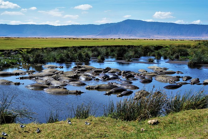 3 Days In Serengeti and Ngorongoro National Park