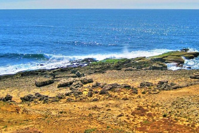 Ericeira: 2h30 World Surf Reserve BTT tour